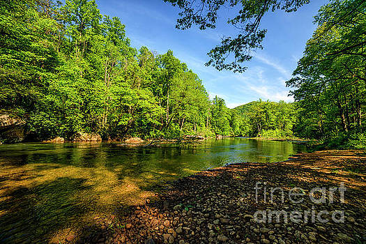 Williams River Spring by Thomas R Fletcher