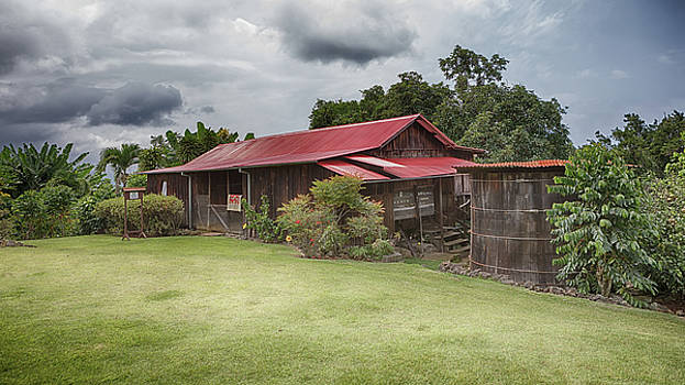 Susan Rissi Tregoning - 1930s Kona Coffee Farmhouse