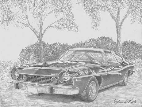 1974 AMC Matador X CLASSIC CAR ART PRINT by Stephen Rooks