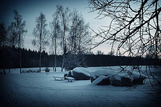 A view of winter in Estonia by Ken Myrk