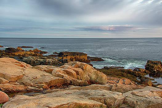 Acadia Shore by Eleanor Bortnick