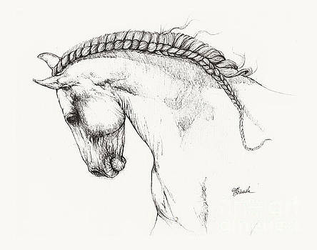 Angel Ciesniarska - andalusian horse drawing