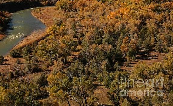 Autumn colors by Byron Fair