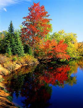 Autumn Splendor by Frank Houck