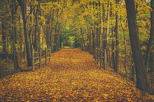 Karol Livote - Autumns Path