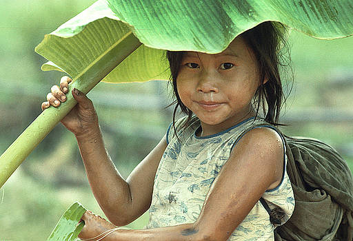 Banana Leaf Umbrella in Laos by Carl Purcell