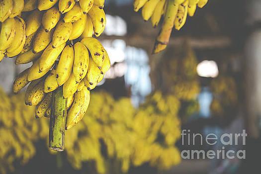 Bananas on the market by Mariusz Prusaczyk