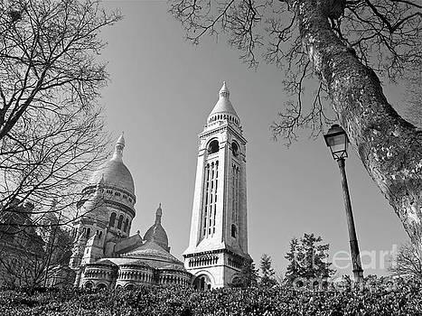 Basilique du Sacre Coeur by Alex Cassels