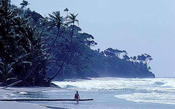 Beach on Trinidad by Carl Purcell