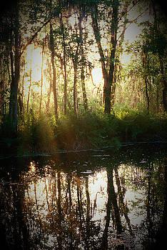 Big Bullfrog Creek by Phil Penne
