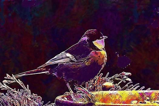 Bird Tit Parus Major Foraging  by PixBreak Art