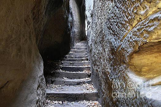 Bohemian Paradise - Rocks Stair - Narrow Path by Michal Boubin