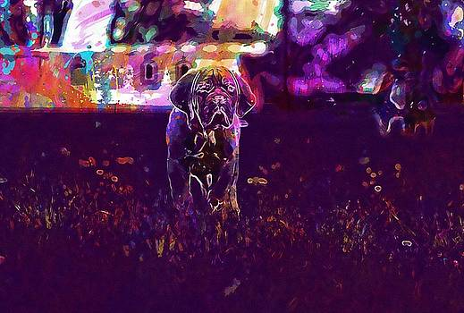 Bordeaux Dog Dogue Mastiff De  by PixBreak Art