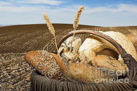 Bread and wheat cereal crops. by Deyan Georgiev