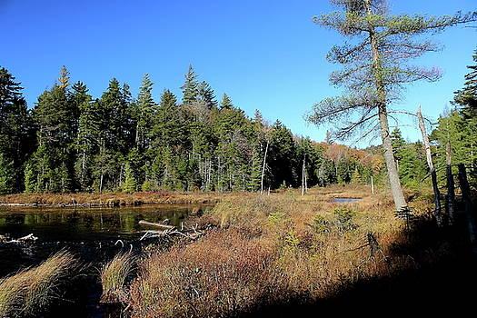 Cascade Lake by Brian Lucia