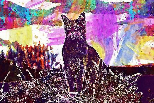 Cat Kitten Mackerel Tiger Cat  by PixBreak Art