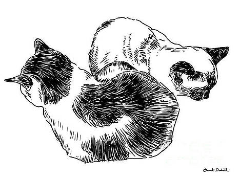 2 Cats by Janet Dodrill