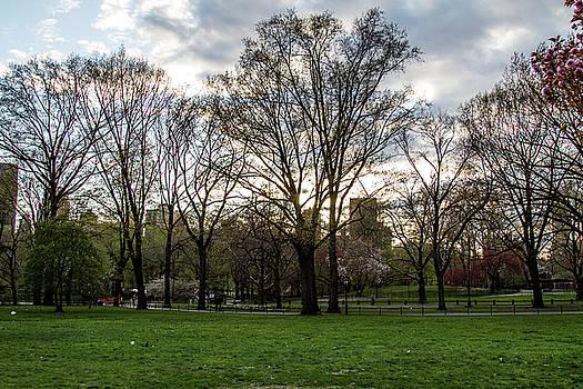 Central Park Views  by Robert J Caputo