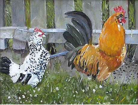 Chickens  by Udi Peled
