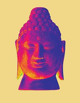 colorful Buddha - Borobudur by Terrell Kaucher