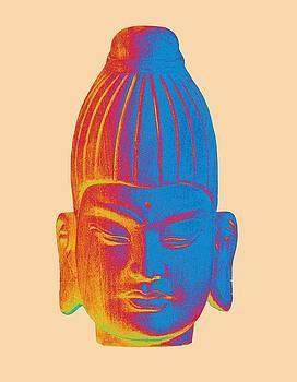 colorful Buddha - Burmese by Terrell Kaucher