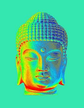 colorful Buddha - Korean by Terrell Kaucher