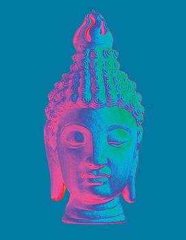 colorful Buddha - Sukhothai by Terrell Kaucher