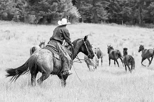 Cowboy Wrangler by Athena Mckinzie