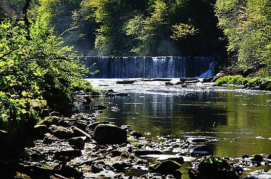 Cramond Waterfall by Nik Watt