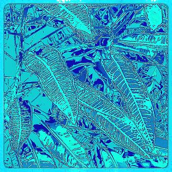 Croton series - Blue by William Braddock