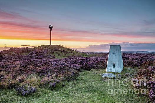 Danby Beacon, North York Moors  by Martin Williams