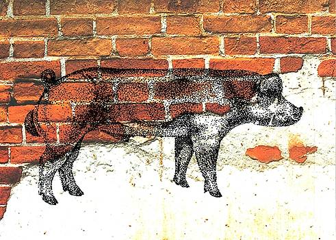 Danish Duroc Boar by Larry Campbell