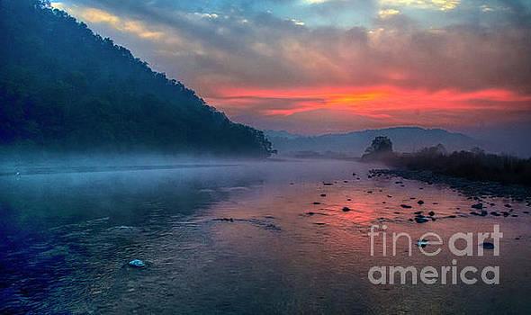 Dawn by Pravine Chester