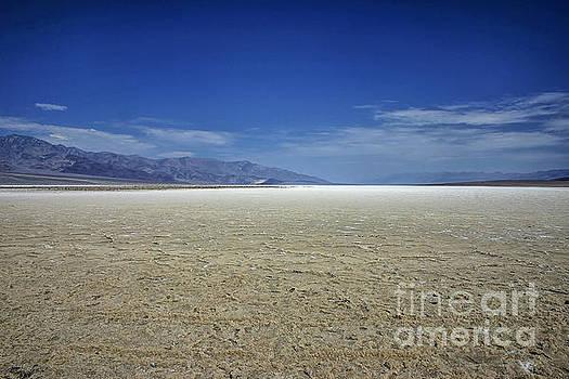 Patricia Hofmeester - Death Valley