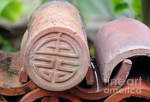 Decorated Traditional Chinese Roof Tiles by Yali Shi