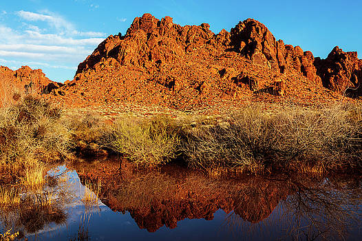 Desert Reflection    by James Marvin Phelps