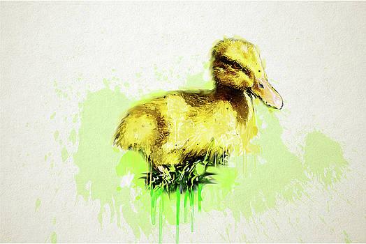 Duckling by Tatiana Tyumeneva
