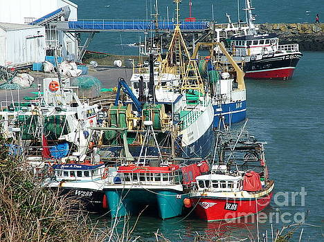 Joe Cashin - Dunmore East harbour