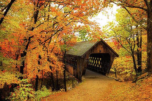 Edna Dean Proctor Bridge by Robert Clifford