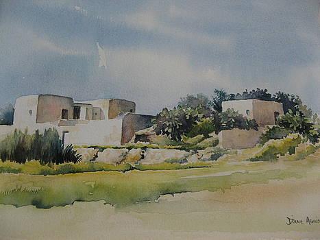 Farmhouse by Diane Agius