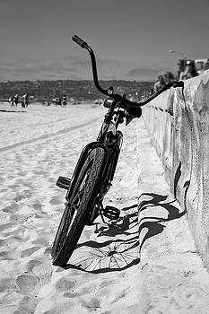 Fat Tire by Peter Tellone