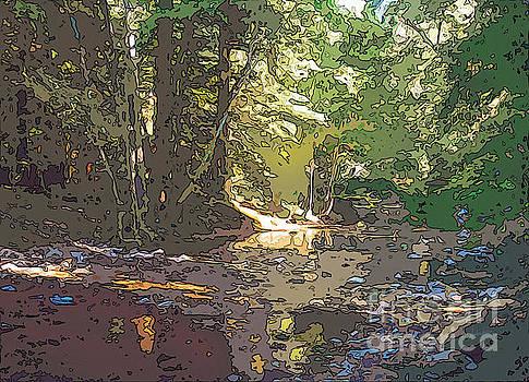 Fernwood  Creek Big Sur by Anthony Forster