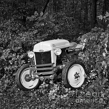Ford In The Woods by Patrick M Lynch