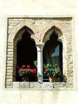 Donna Corless - 2 Geraniums in Ornate Window