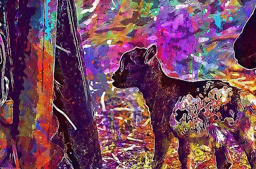 Goat Wildpark Poing Young Animals  by PixBreak Art