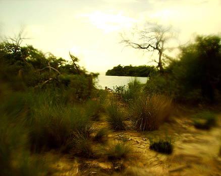 Hidden Beach by Steve Madore