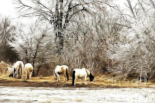 Horses on the farm by Odon Czintos