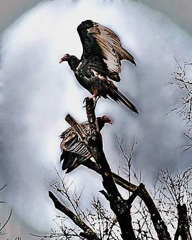 2 In A Dead Tree by Philip A Swiderski Jr