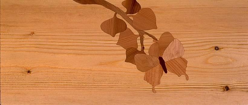 Inlaid window valances by Scott Reuman