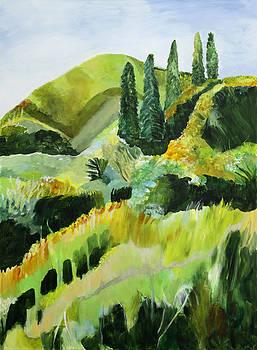 Inspiration Point by Sarah Whitecotton